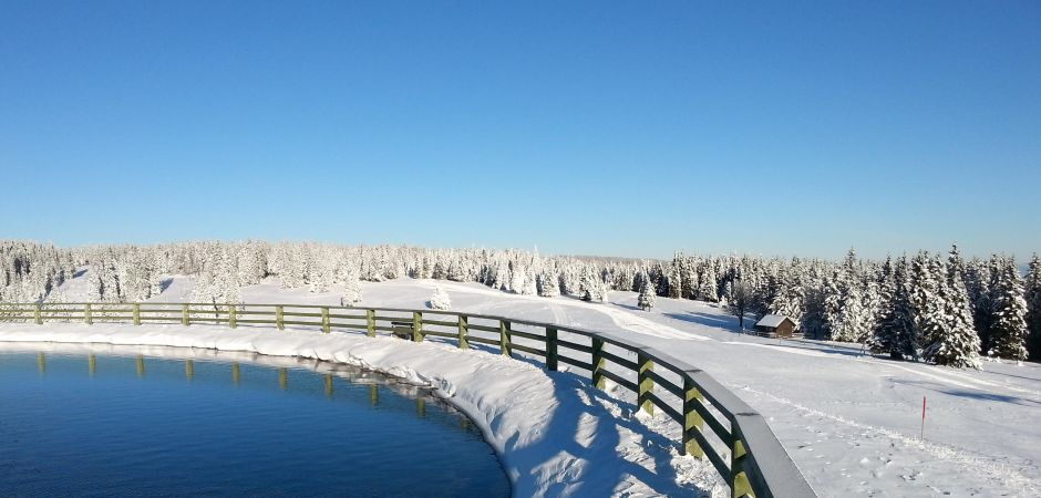 WINTER IN ROGLA
