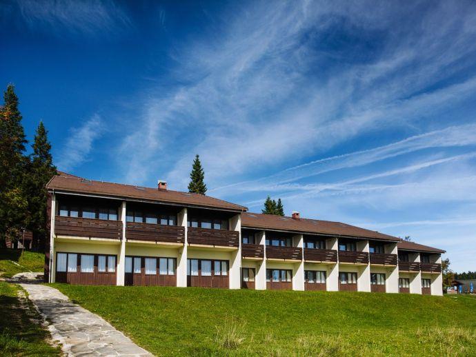Hotel Brinje ***