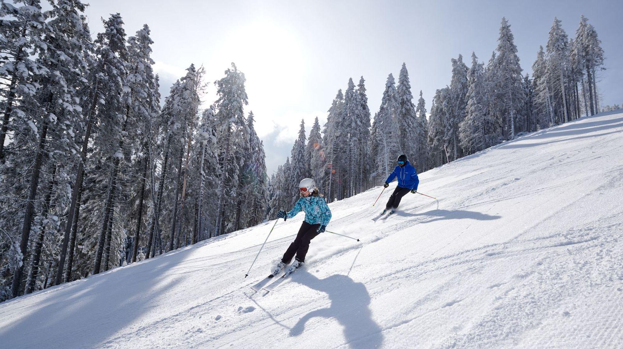 Rogla ski package