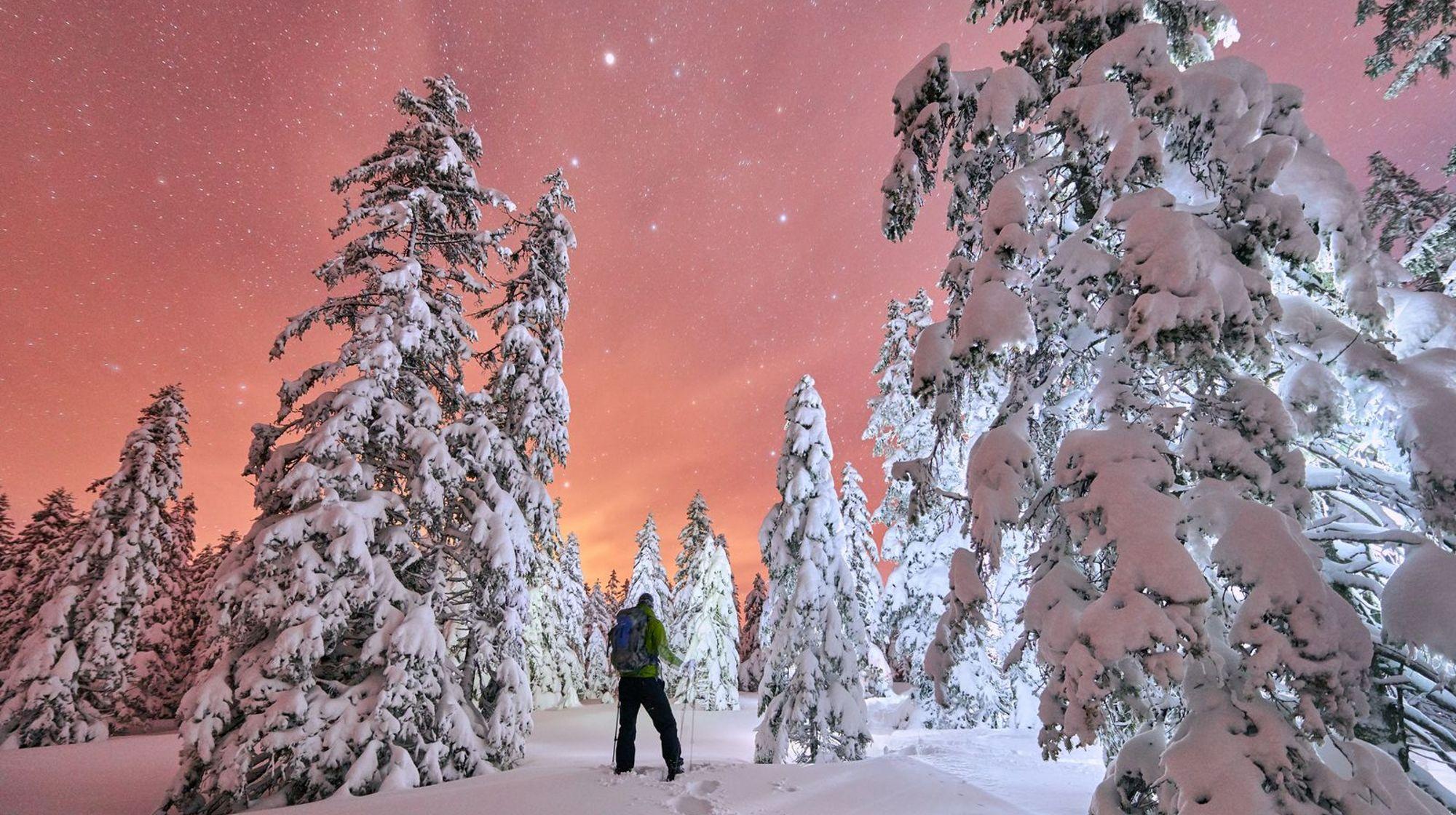Zimske počitnice na Rogli